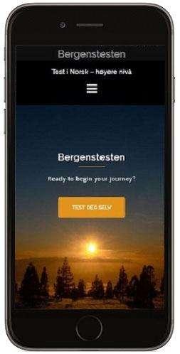 Bergenstest, Bergenstesten, norsk, eksamen, språk, test i norsk, høyere nivå, Norwegian