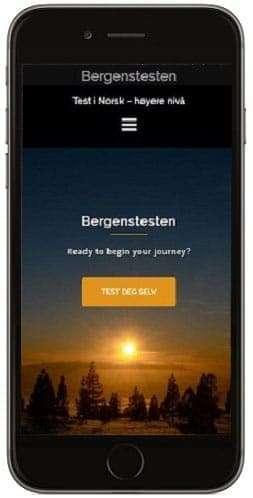 Bergenstest, Bergenstesten, Referat, intervju, norsk eksamen,norsk, Norwegian, exam, Test i norsk høyere nivå, bokmål